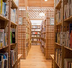 Spruce Pine Fir Book Shelf