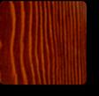 Walnut PU Gloss Gloss | Douglas Fir Lumber