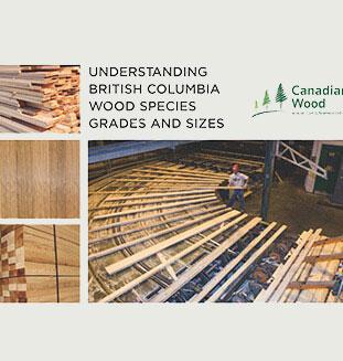 Lumber Grades Canada