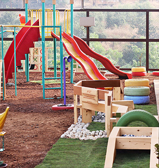 Yellow cedar Uses for Playground Equipments